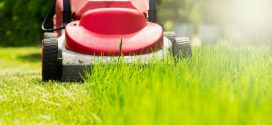 Lawn Care Offers Sales and Customer Service