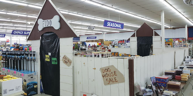 Doghouse Display Houses Doggone Deals