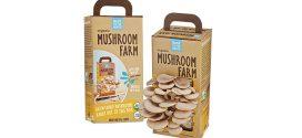 Small Mushroom Farm