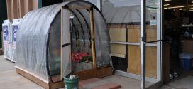 Greenhouse Makes Gardening Easy