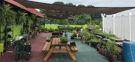 Washington Business Offers Rooftop Views, Urban Gardening and Yoga