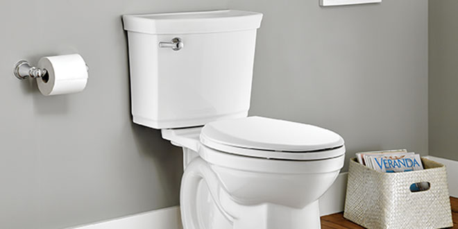 Self-Cleaning Toilet