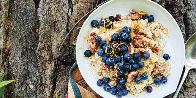 Delicious Recipes to Try Cooking While Camping