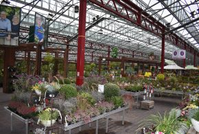 How Two German Garden Centers Stay Successful