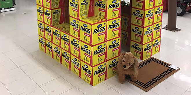 Whitmore Ace Gets Creative With Power Aisle Merchandising