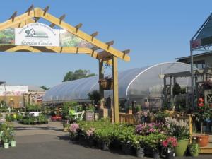 GardenCenterCLEAR