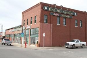 Lyndsay Bayne - Ross Building