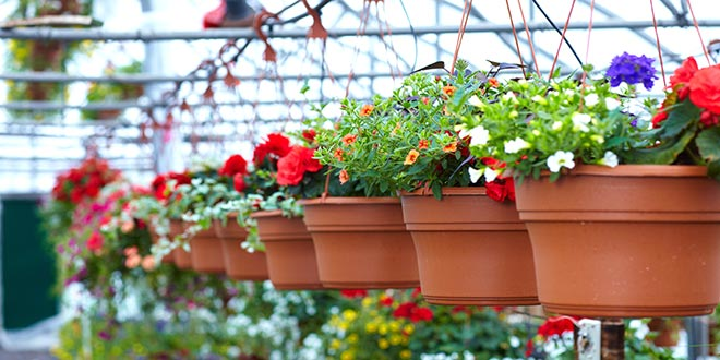 6 Tips for Spring Merchandising