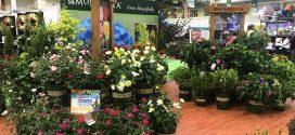 Garden Center Show