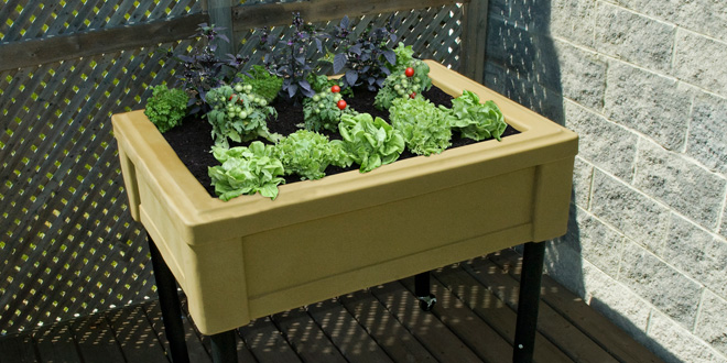 outdoor planter