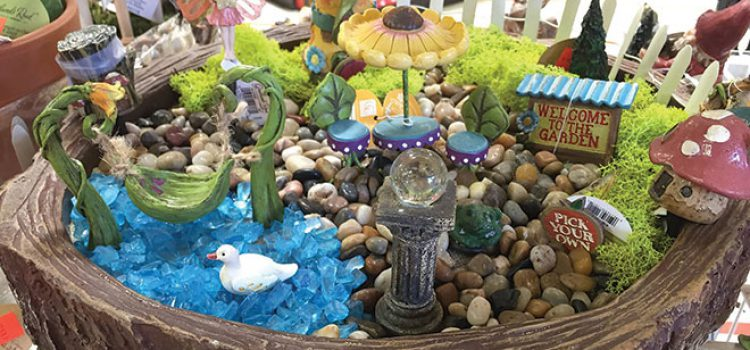 Play Hide-and-Seek in the Fairy Garden