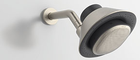 showerhead and wireless speaker