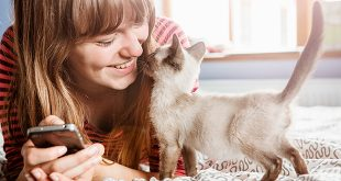pet-loving customers