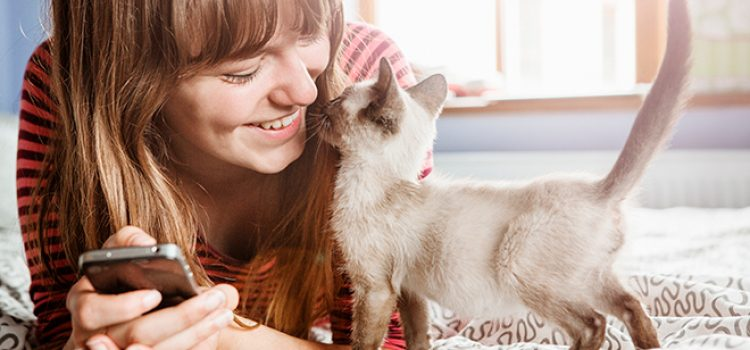 Ways to Reach Your Pet-Loving Customers