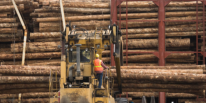 NAHB lumber production