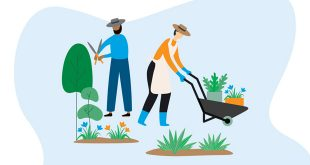 Graphic of two people gardening